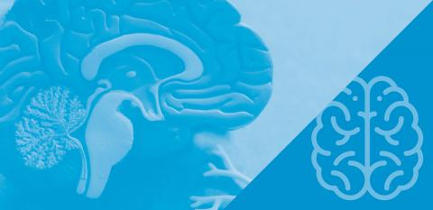 Brain image and icon on blue background